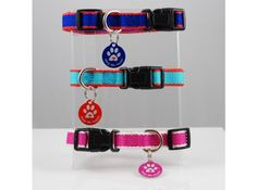 QR Tag & Collar for Small Pets | Coupaw