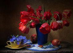Tulips, Still-life ... - Pixdaus