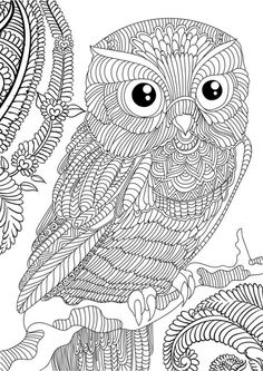 Difficult Owl Adults Printable Coloring Page Free Sheets Adult Pages Halloween