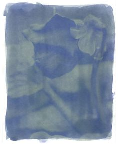 Anthotypes: How different paper effects the emulsion color. Writer and photography / Heather Siple