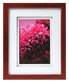 Carr Gallery Frame with Air Float Mat 14 by 18Inch Matted to 11 by 14Inch Espresso -- To view further for this item, visit the image link.