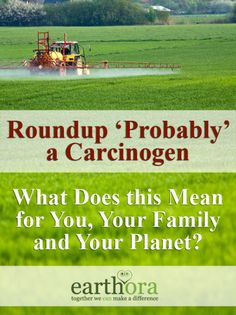 Roundup 'Probably' a Carcinogen: What does this mean for you, your family and your planet?