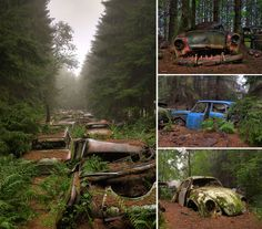 nature-reclaiming-abandoned-places-10--------- Where Cars Go To Die   This vintage automobile graveyard located in Belgium looks like a line of abandonded traffic in the middle of a tree-lined forest.