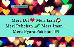 14 August Independent day of Pakistan ♡ ❤ ♡. . Follow me here MrZeshan Sadiq