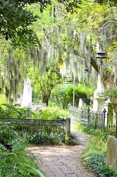 Downtown Historic Charleston Cemetery