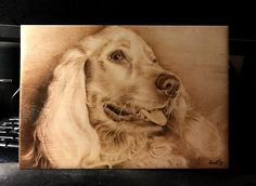 Cocker Spaniel pyrography by heart pyr Cocker Spaniel, Pyrography, Portrait Art, Pet Birds, Wood Art, Wood Crafts, Lion Sculpture, Woodworking, Watercolor