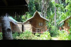 Recently booked one of these bad boys for some jungle & beach living in Bohol, Philippines.