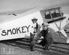 Smokey the bear cub is flown from Santa Fe, N.M., to his new home at the Washington National Zoo in a Piper J-3 Cub, by New Mexico's Assistant State Game Warden Homer C. Pickens, in 1950.  Life Magazine