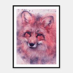 Red Fox Plakaty w ramie