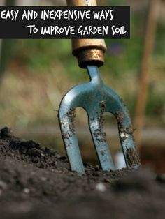 Easy and Inexpensive Ways to Improve Garden Soil