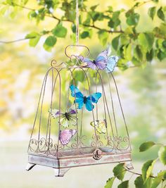 DIY a gorgeous outside decoration like this butterfly bird cage with this easy tutorial!