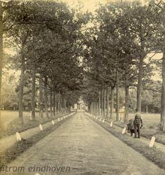 Oprijlaan naar Kasteel Heeze, Kapelstraat 25, 1880 - 1910