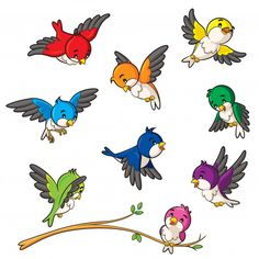Illustration of cute birds collection. Cartoon Bird Drawing, Cartoon Birds, Bird Drawings, Cartoon Drawings, Drawing Faces, Free Vector Graphics, Free Vector Art, Vogel Illustration, Bird Template
