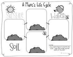 Image result for types of plants worksheets for kindergarten
