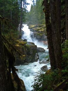 Waterfalls of Northern Gifford Pinchot National Forest, Washington State.