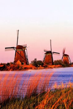 Windmill  country and the birthplace (I am sure:)) of those hidious crocks shoe ...Holland