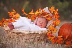 My October Baby  (photo by: Jen Brankin Antoniou (Polixenni Photography)