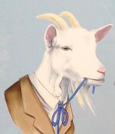 Typical goat...chewing on his tie...reminds me of a couple goat friends we know... Shady Goat Farm, JJ? Nib?