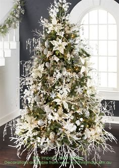 Christmas Trees 2016 - WOW.com - Image Results