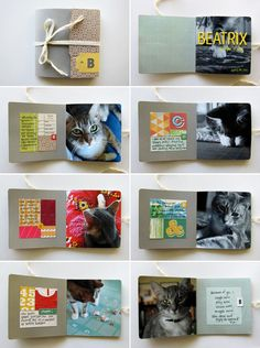 "Adorable mini book for a furry friend. ""Beatrix,"" by Jamaica Makes."