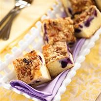 Blueberry Ricotta Cheese Coffee Cake