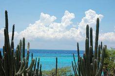 Aruba vacation scene