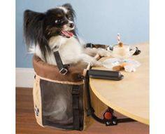 Doggie Table Accessories  (No way)
