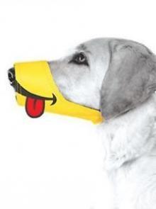 Cesar Millan Funny Muzzle, Smile, Size 2, Yellow