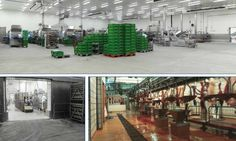Sistema de pavimento MONILE es un referente para la industria agroalimentaria a nivel mundial. Distribuido por POLYTEC QUIMICA