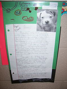 cute with a crazy pet persuasive writing activity.give each student a photo and have them write a letter persuading parents to keep it Writing Lessons, Teaching Writing, Writing Activities, Writing Websites, Teaching Ideas, 5th Grade Writing, 4th Grade Reading, Opinion Writing, Essay Writing