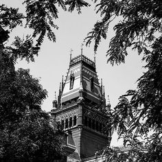 """""""I've been looking forward to posting this photo for a while now. I hope I treated it well.  #exploring #wandering #exploreusa  #exploreAmerica #summer #August #bnw #blackandwhite #daylight  ##streetphotography #street bw_society_buildings #bw_society #bnw_captures #bnw_city #bnw_usa #Massachusetts #cambridge"""" Photo taken by @ndoocy on Instagram, pinned via the InstaPin iOS App! http://www.instapinapp.com (09/16/2015)"""