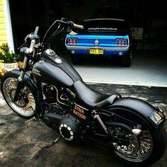 Harley dina and mustang