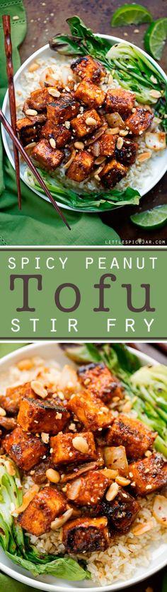 Spicy-Peanut-Tofu-Stir-Fry-9-(2)
