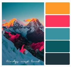 Picking a style and colors for your wedding can be so hard! This collection of palettes and style ideas can help you visualize the wedding of your dreams. Color Schemes Colour Palettes, Colour Pallette, Color Palate, Color Combos, Peacock Color Scheme, Orange Color Palettes, Colour Board, Color Stories, Color Swatches