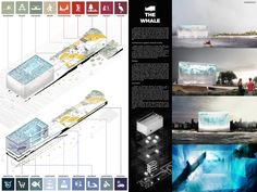 """"""" THE WHALE """" - NYC Aquarium competition finalist"""