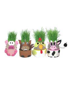 Farm Animal Grow-A-Head Plant Set by Grow-A-Head #zulily #zulilyfinds