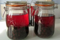 Foraging for Free Food: How to Hunt Out a Hedgerow Harvest...This article is a real treat..Rowan and Elderberries, Sloe gin and Blackberries...You can almost smell the hedgerows......