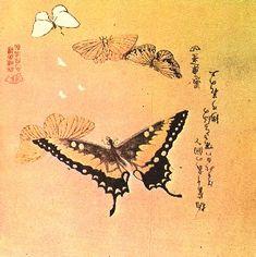 http://truefaith7.hubpages.com/hub/japanese-butterfly-art