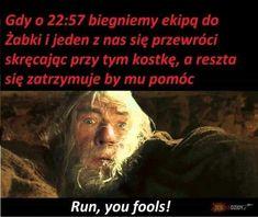Best Memes, Funny Memes, Jokes, Smile Everyday, Tolkien, Lotr, The Hobbit, Haha, Humor