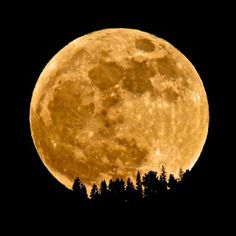 All this photo needs is E.T. flying around on a bike. (A supermoon rises over a ridge in British Columbia).