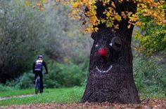 Un arbre se prend pour un clown en Allemagne.