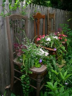 Hanging an old chair on a fence makes a nice plant holder.