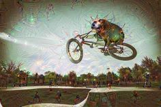 BICYCLE DOG SLUG SURVEYS THE SKATE PARK OF THE SQUID PEOPLE