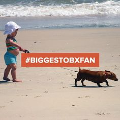 The ‪#‎BiggestOBXFan‬ has pets that love the Outer Banks just as much as we do! For week 2, enter your favorite OBX pet photo for a chance to win a trip. Don't forget to use #BiggestOBXFan on your Instagram submission! Enter here: woobox.com/iw8845