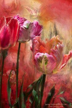 Spring Tulips ~ Color of Love  by Carol Cavalaris 2008