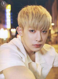 Wonho Photobook [Monsta X: Temperature]