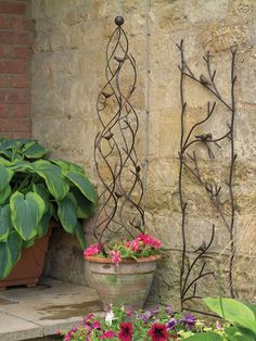 garden pot obelisk...morning glory vine or a passion vine