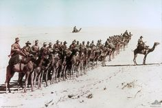 Caption: Australians of the Imperial Camel Corps near Rafa during the war against the Ottoman Empire. Middle Eastern theatre of World War I.Egypt, 26 January Paget platePhoto: James Francis Hurley - (Frank Hurley) ©R Schultz Collection / The Image Works World War One, First World, Naher Osten, Anzac Day, Spiegel Online, World History, Military History, Horses, Pictures
