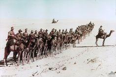 WWI: Australian soldiers in Egypt
