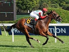 Backseat Rhythm(2005)(Filly) El Corredor- Kiss A Miss By Kissin Kris. 4(C)x5(C) To Mr Prospector. 20 Starts 5 Wins 2 Seconds 4 Thirds. $842,195. Won 1 1/8M Garden City S(G1T), 1 1/8M Lake Placid H(G2T), 1 1/8M Hillsborough S(G3T), 2nd 1M Frizette S(G1), 1 1/8M Queen Elizabeth II Challenge Cup S(G1T), 3rd BC Juvenile Fillies (G1), 1 3/8M The Very One S(G3T).